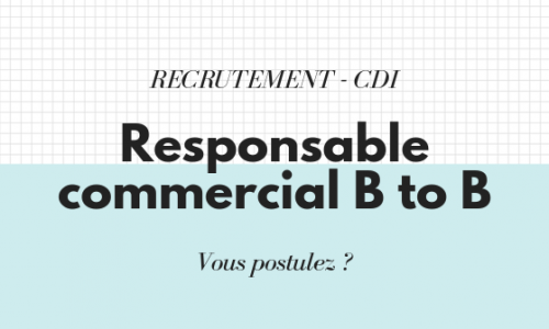 RESPONSABLE COMMERCIAL B TO B